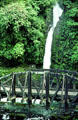 Waterfall and bridge on road to Poas. Costa Rica.