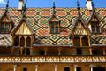 Roof details of Hotel Dieu. Beaune, France.