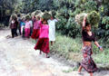 Carrying harvested grass cane in Chitwan National Park. Nepal.