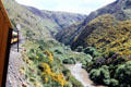 View of the gorge from the Taieri Gorge Rail Road. New Zealand.