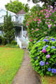Flowered path leading to Eugene O'Neill's Monte Cristo Cottage. New London, CT.