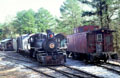 Stone Mountain Rail Road yard with antique rolling stock. Atlanta, GA.