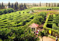 Dole Plantation Maze, the world's largest. Oahu, HI.