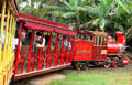 Tour train at Dole Plantation. HI.