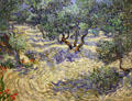 Olive Orchard painting by Vincent van Gogh at Nelson-Atkins Museum. Kansas City, MO.