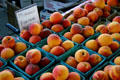 Peaches at Kansas City Market. Kansas City, MO.