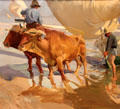 Oxen on the Beach painting by Joaquin Sorolla y Bastida at Memorial Art Gallery. Rochester, NY