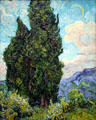 Cypresses by Vincent van Gogh at Metropolitan Museum of Art. New York, NY.